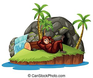 Monkey on the island