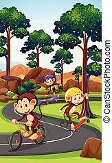Monkey playing extreme sport