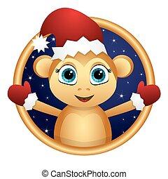 Monkey Santa in a frame.