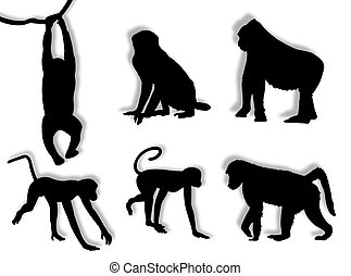 Monkey silhouettes in different poses and attitudes