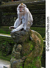 Monkey sitting on top of a statue in Monkey Forest at Ubud