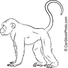 Monkey Sketching Vector Illustration