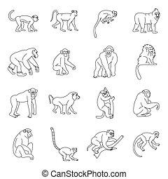 Monkey types icons set, outline style