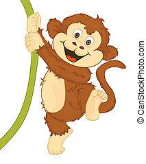 Monkey Vector Cartoon Illustration