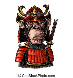 Monkey with samurai sword and japan armor. Vintage black engraving