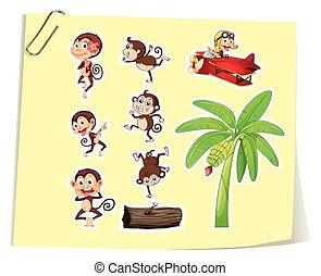 Monkeys and banana tree illustration