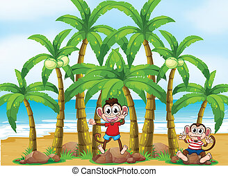 Monkeys at the beach with coconut trees