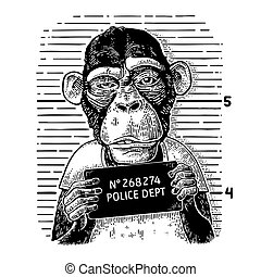 Monkeys in a T-shirt holding a police department banner -...