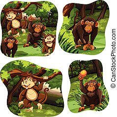 Monkeys living in the deep forest