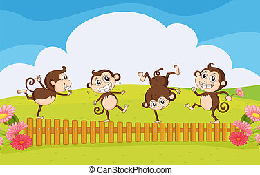 Monkeys playing in the garden