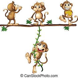 Monkeys swinging - Illustration of monkeys swinging on a...