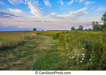 Monmouth Battlefield at Dusk - An open field at dusk in...