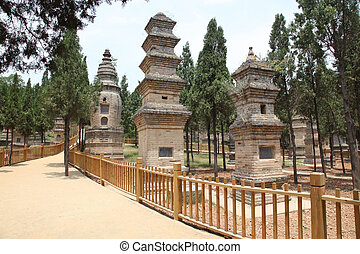 monniken, shao, graf, tempel, opgespoorde, lin, bonzes, eminent, pagodas, pagoda, concentratie, xian, het is, china., bos