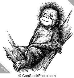 mono, aislado, ilustración, vector, negro, grabar, blanco