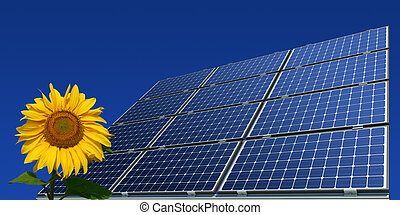 Mono-crystalline solar panels and sunflower against a blue...
