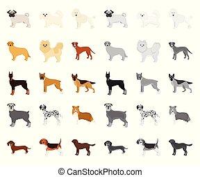 mono, design., wektor, rysunek, pies, dziedziczy się, pieszczoch, komplet, sieć, pień, zbiór, symbol, ikony, illustration.