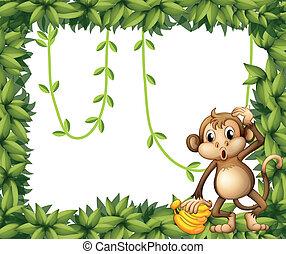mono, hojas, marco, plátanos