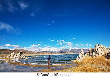 Mono lake formations