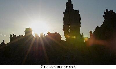 Mono Lake Wildlife at Sunrise - Birds nesting in Exposed...