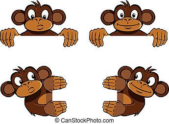 mono, marco, decoración