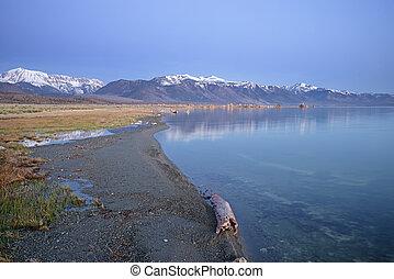 mono, rivage, lac