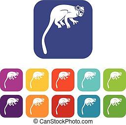 mono tití, plano, conjunto, mono, iconos