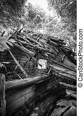 monochrome black and white infrared photography house in the woods.