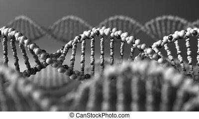 Monochrome DNA molecules. Genetic disease, modern science or molecular diagnostics concepts. 4K seamless loop animation