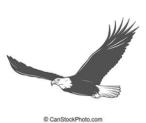 eagle - Monochrome eagle on a white background.