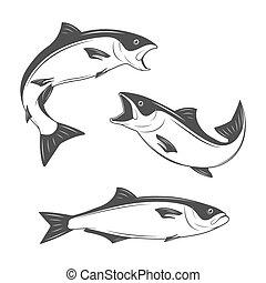 monochrome, fish, vecteur, ensemble