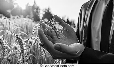 Monochrome image of businessman holding ear of wheat