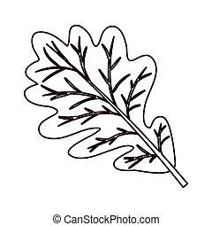 monochrome silhouette of dried leaves oak