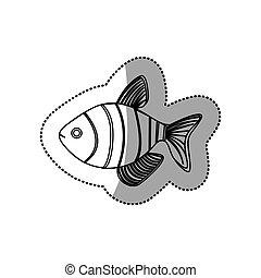 monocromático, adesivo, contorno, peixe