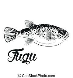 monocromático, peixe, fugu