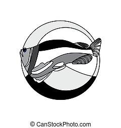 monocromático, peixe, salmão