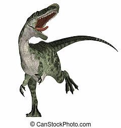 Monolophosaurus on White - Monolophosaurus was a carnosaur...