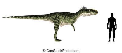 Monolophosaurus Size Comparison - Illustration of a...