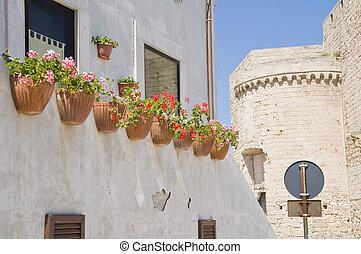 Monopoli Oldtown. Apulia.