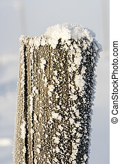 Monring light on a frost covered fence post