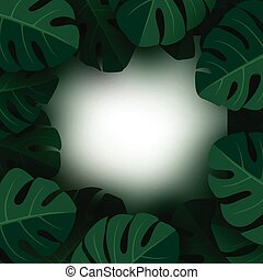Monstera deliciosa tropical leaves background with copy space vector illustration