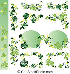 Monstera design elements