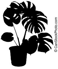 monstera the potted plant vector silhouette