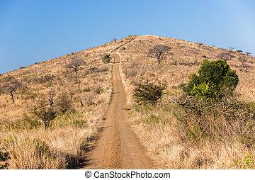montée, colline, route, terre