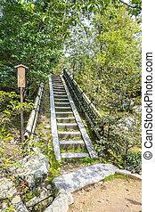montée, escalier, nature