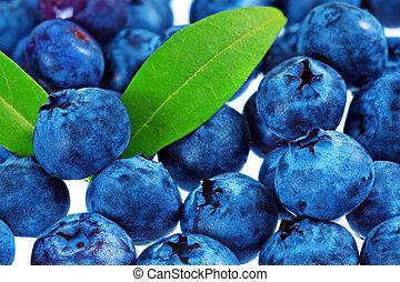 montón, plano de fondo, fresco, blueberrys, aislado, blanco