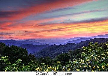 montaña azul, caballete, color