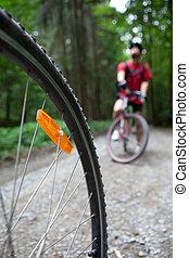 montaña biking, -, joven, activo, gente, biking, en, un, bosque, (shallow, dof, foco, en, el, tyre)