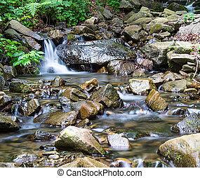montaña, creek_02