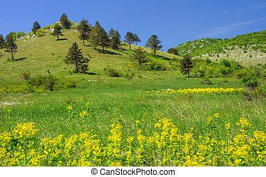 montaña, croacia, paisaje, lika
