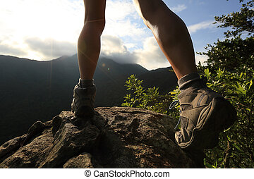 Montaña, excursionismo, joven, excursionista, pico, piernas